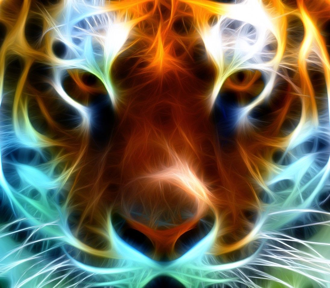 Neon Animals Wallpapers Top Free Neon Animals Backgrounds Wallpaperaccess