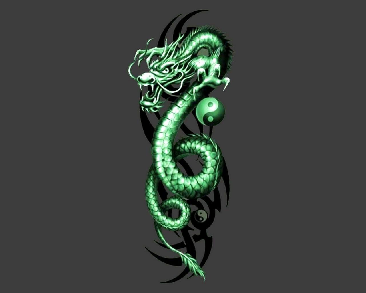 Neon Green Dragon Wallpapers Top Free Neon Green Dragon Backgrounds Wallpaperaccess