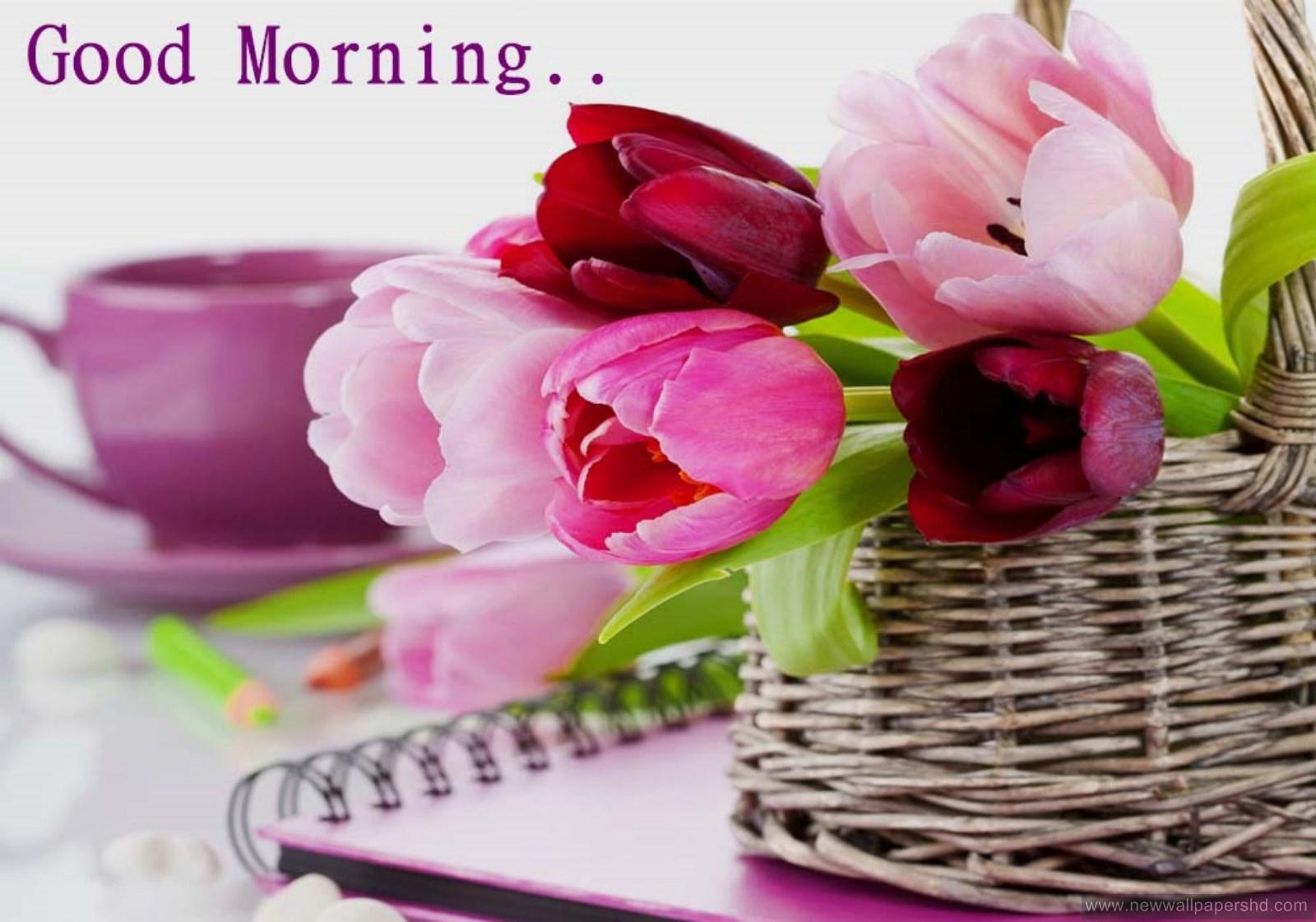 1600x1121 Chào buổi sáng Hình nền đẹp (1600x1121)