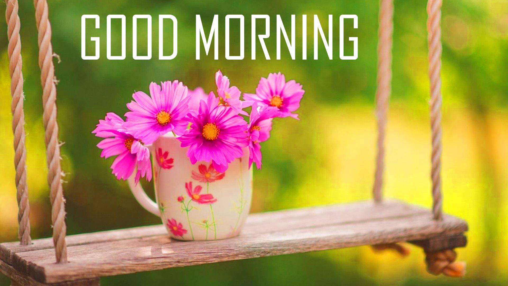 1920x1080 Good Morning Image Photo Picture With Flowers Tải xuống HD - Good Morning Image.  Chào buổi sáng Hình ảnh HD Downlaod.  Hình nền Good Morning Pics HD