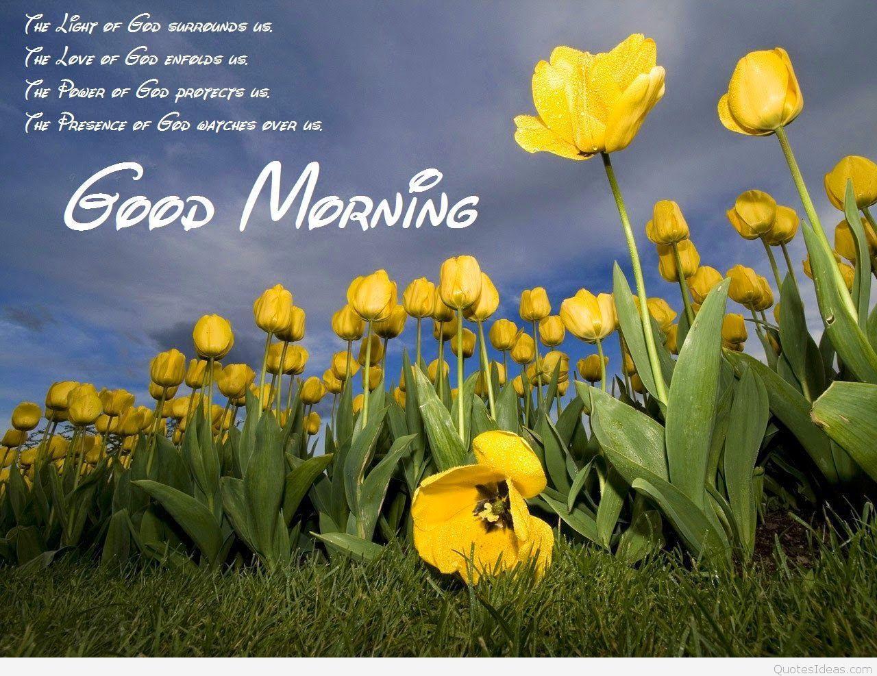 1280x987 Chào buổi sáng tách cà phê hình nền độ nét cao