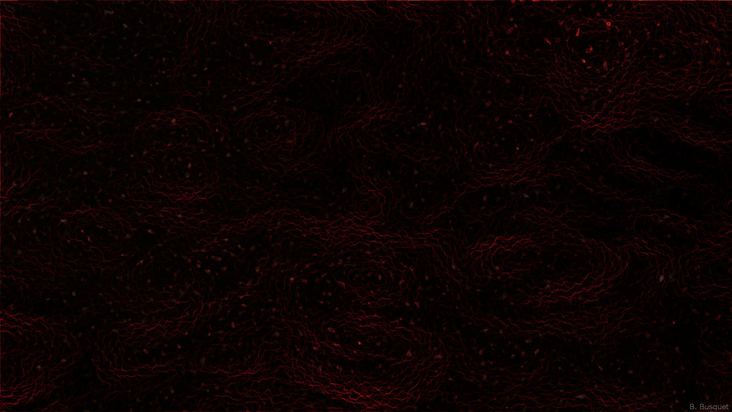 2560X1440 Black Wallpapers
