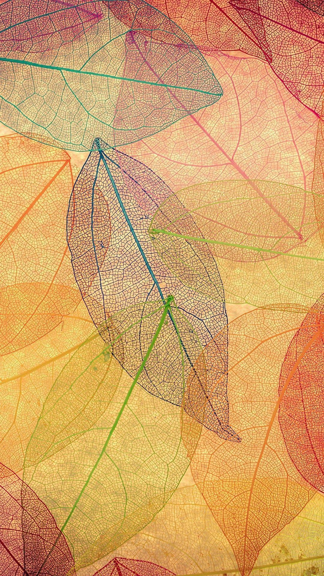 Hình nền 1080x1920 của tuần: mùa thu