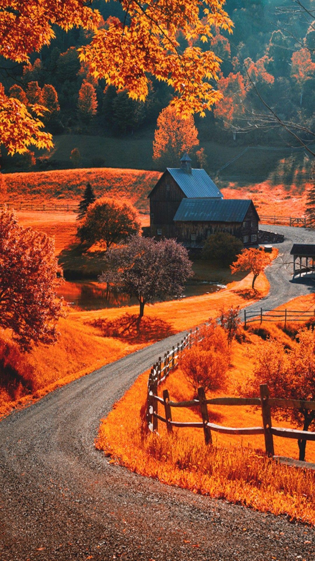Hình nền mùa thu cho iPhone 6 1080x1920