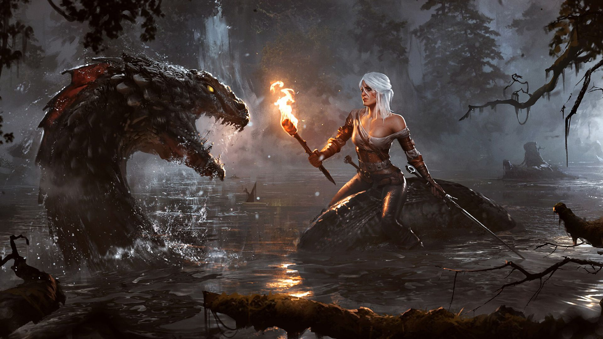 The Witcher 1920x1080 Wallpapers Top Free The Witcher 1920x1080 Backgrounds Wallpaperaccess