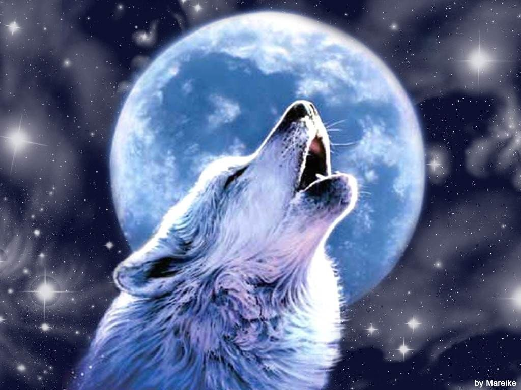 Wolf Moon Wallpapers - Top Free Wolf Moon Backgrounds - WallpaperAccess