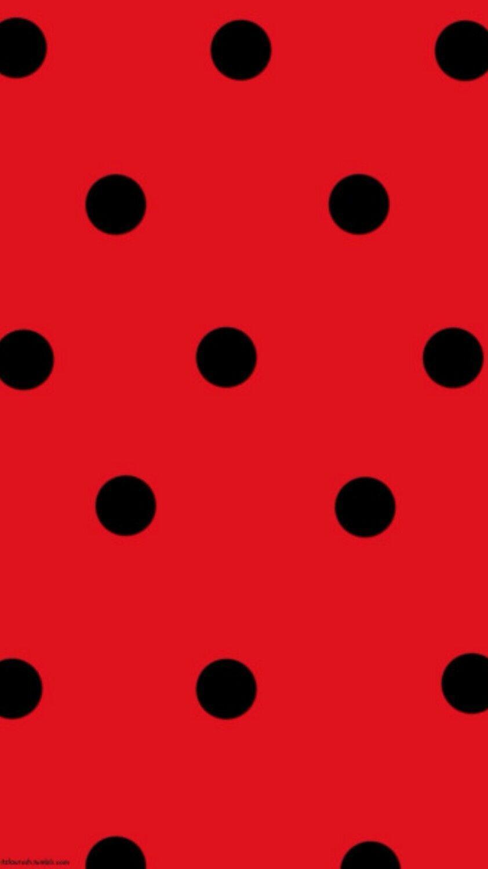 Ladybug Wallpapers - Top Free Ladybug Backgrounds ...