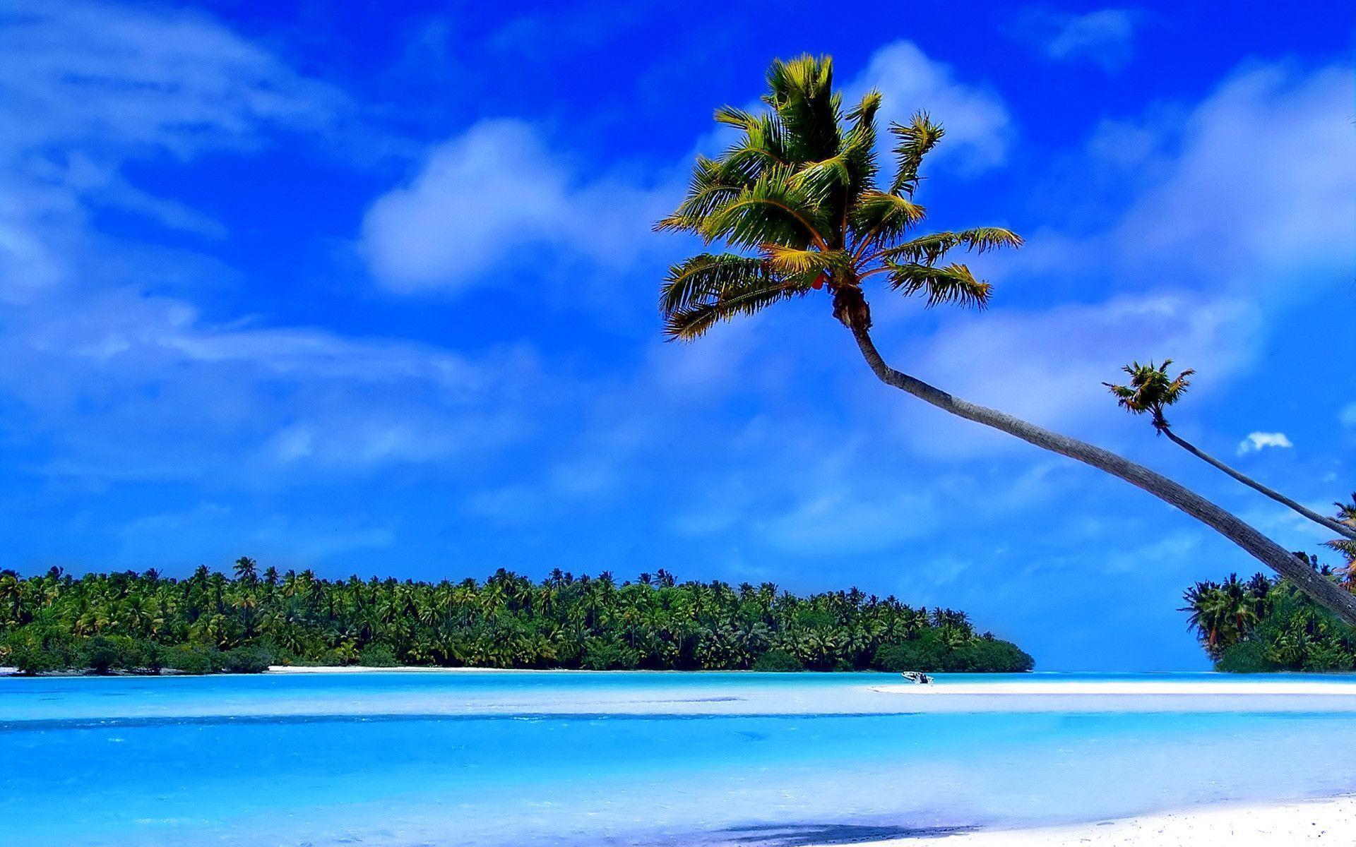Caribbean Islands Wallpapers Top Free Caribbean Islands Backgrounds Wallpaperaccess