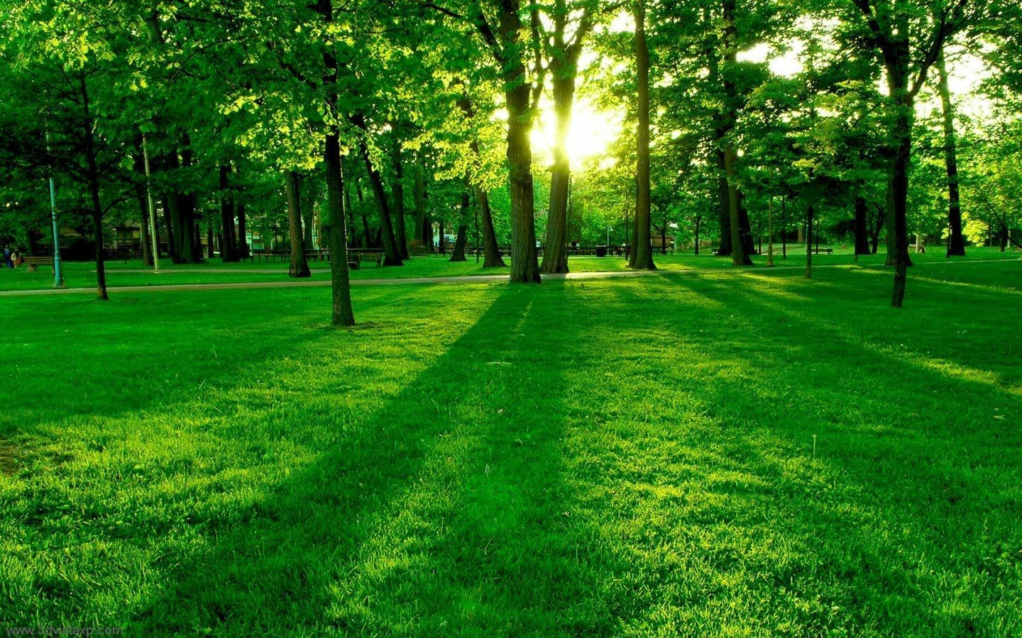 Most Beautiful Nature Wallpapers - Top Free Most Beautiful Nature