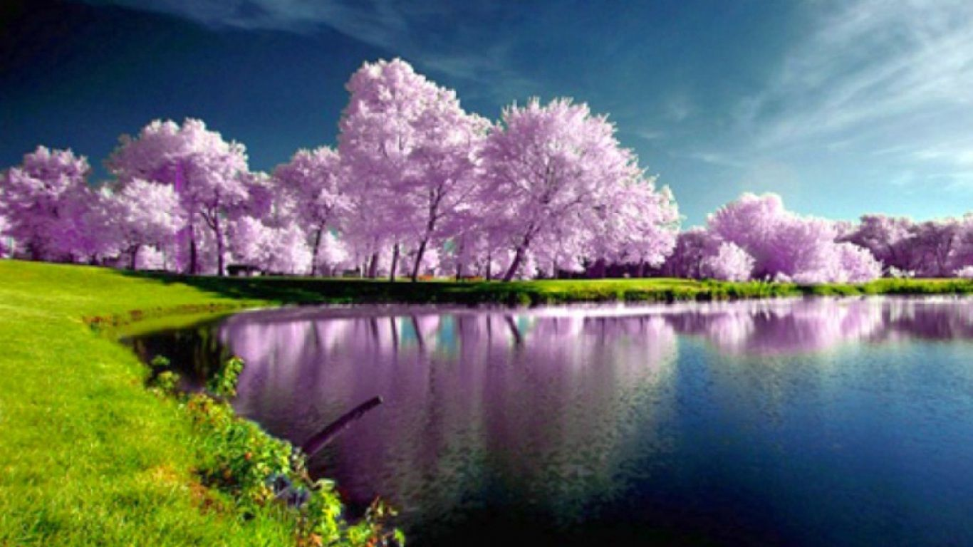 Most Beautiful Nature Wallpapers - Top Free Most Beautiful