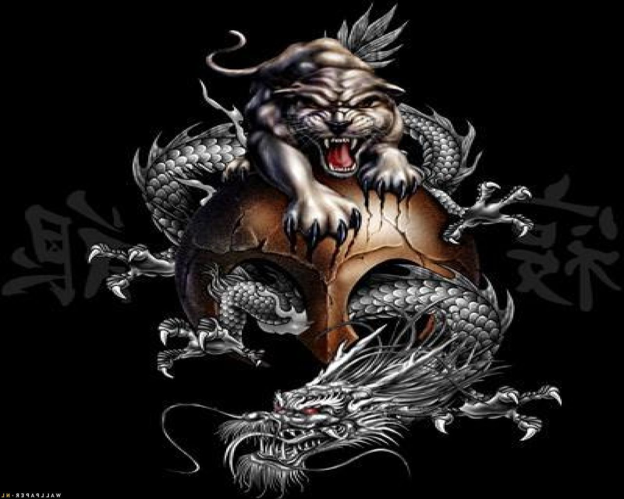 Tiger And Dragon Wallpapers Top Free Tiger And Dragon Backgrounds