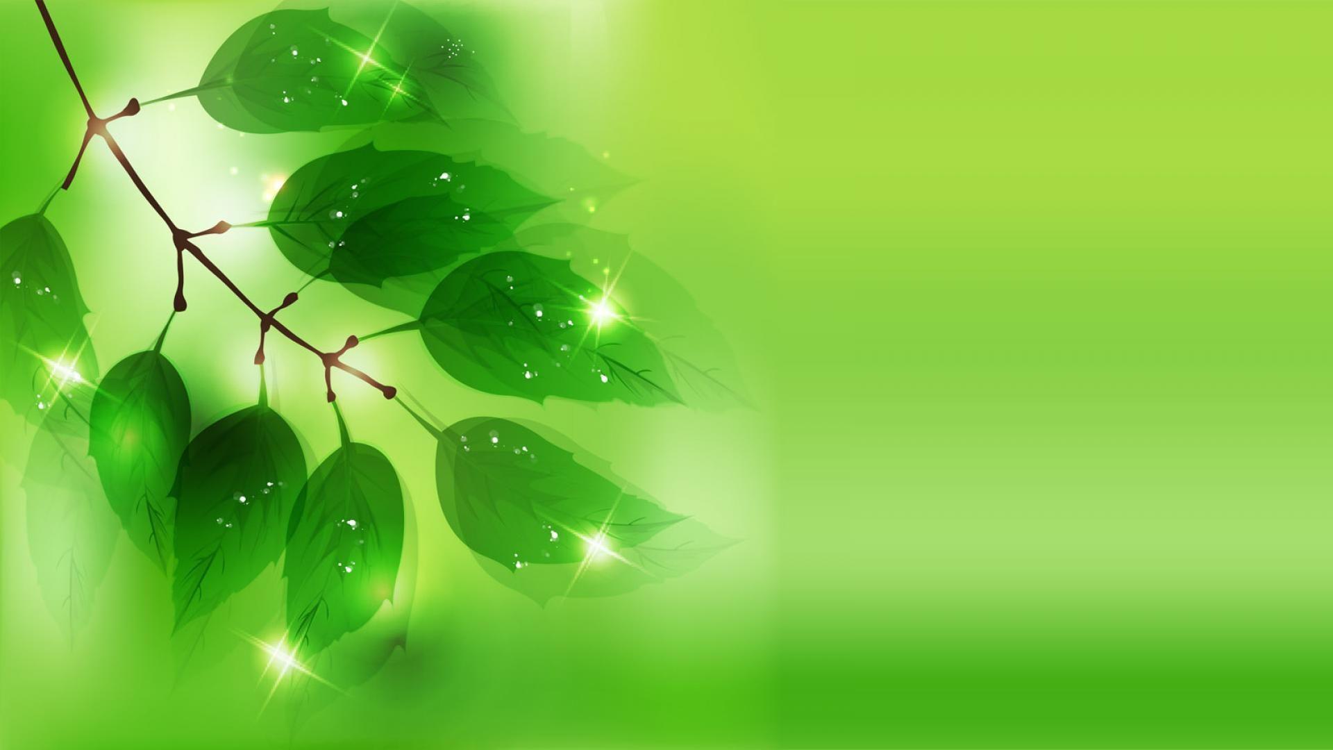 Green Vector Wallpapers   Top Free Green Vector Backgrounds ...