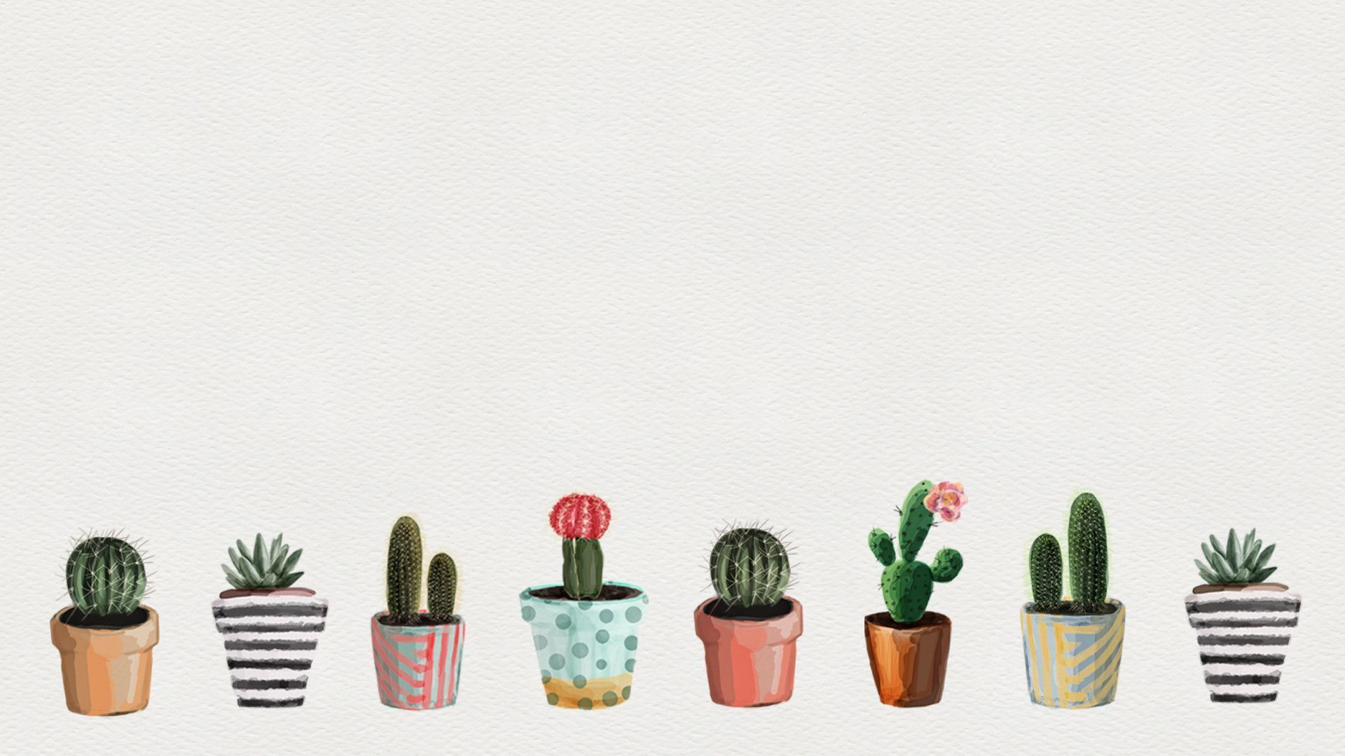 Succulents Desktop Wallpapers Top Free Succulents Desktop Backgrounds Wallpaperaccess