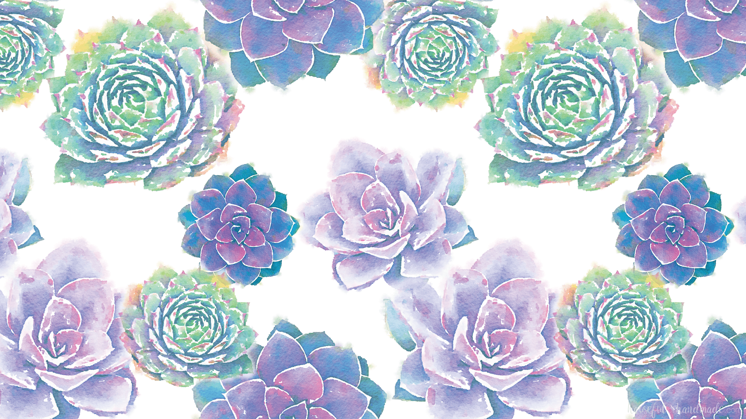 Watercolor Succulent Wallpapers Top Free Watercolor Succulent Backgrounds Wallpaperaccess