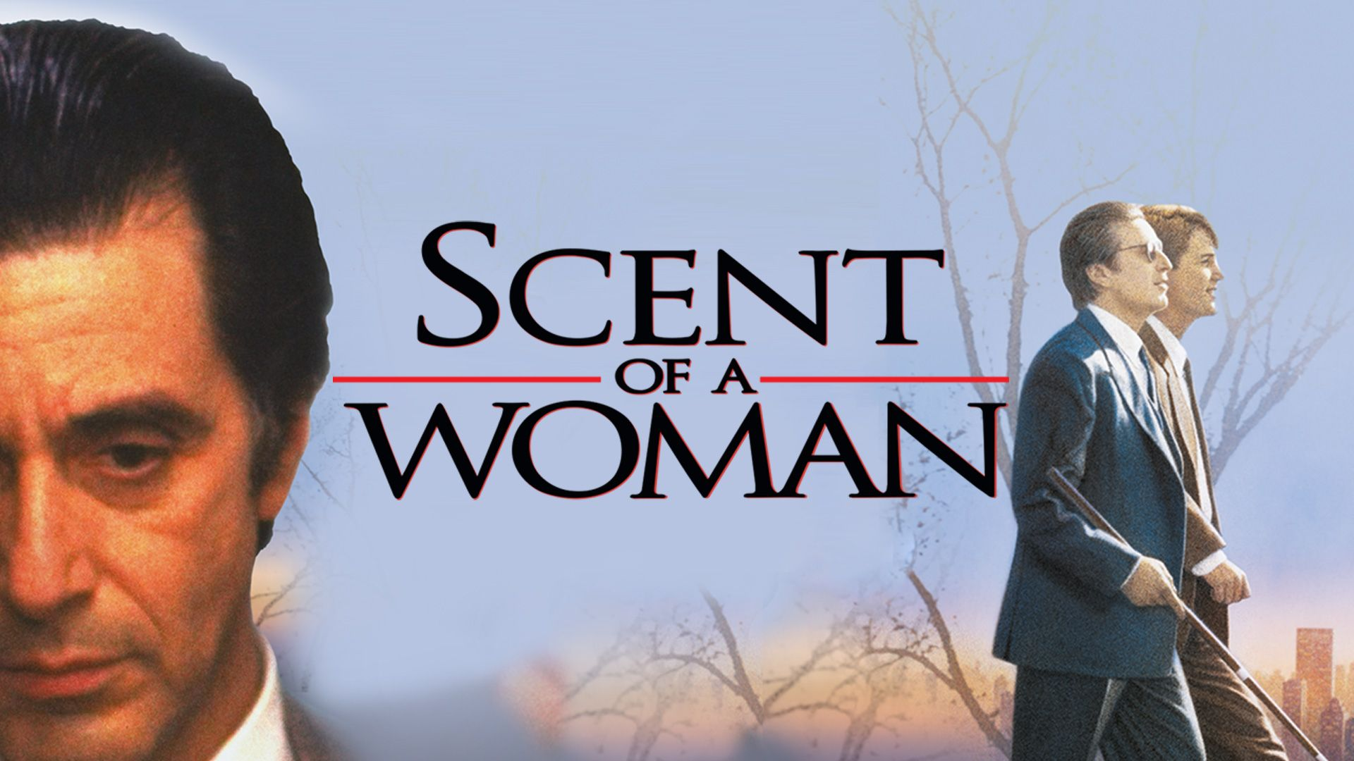 Scent Of A Woman Wallpapers Top Free Scent Of A Woman Backgrounds Wallpaperaccess