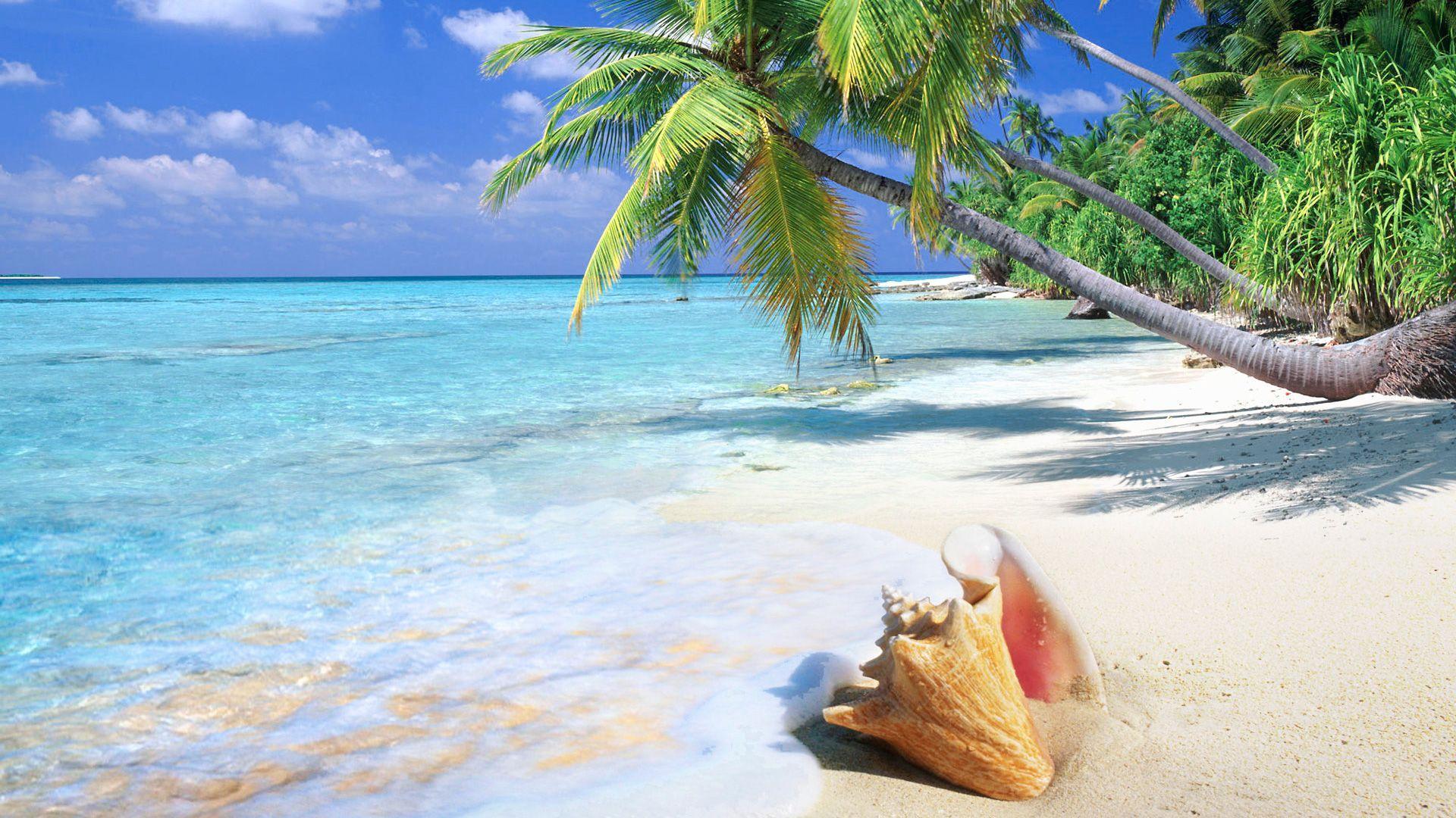 1920x1080 Tropical Island hình nền miễn phí