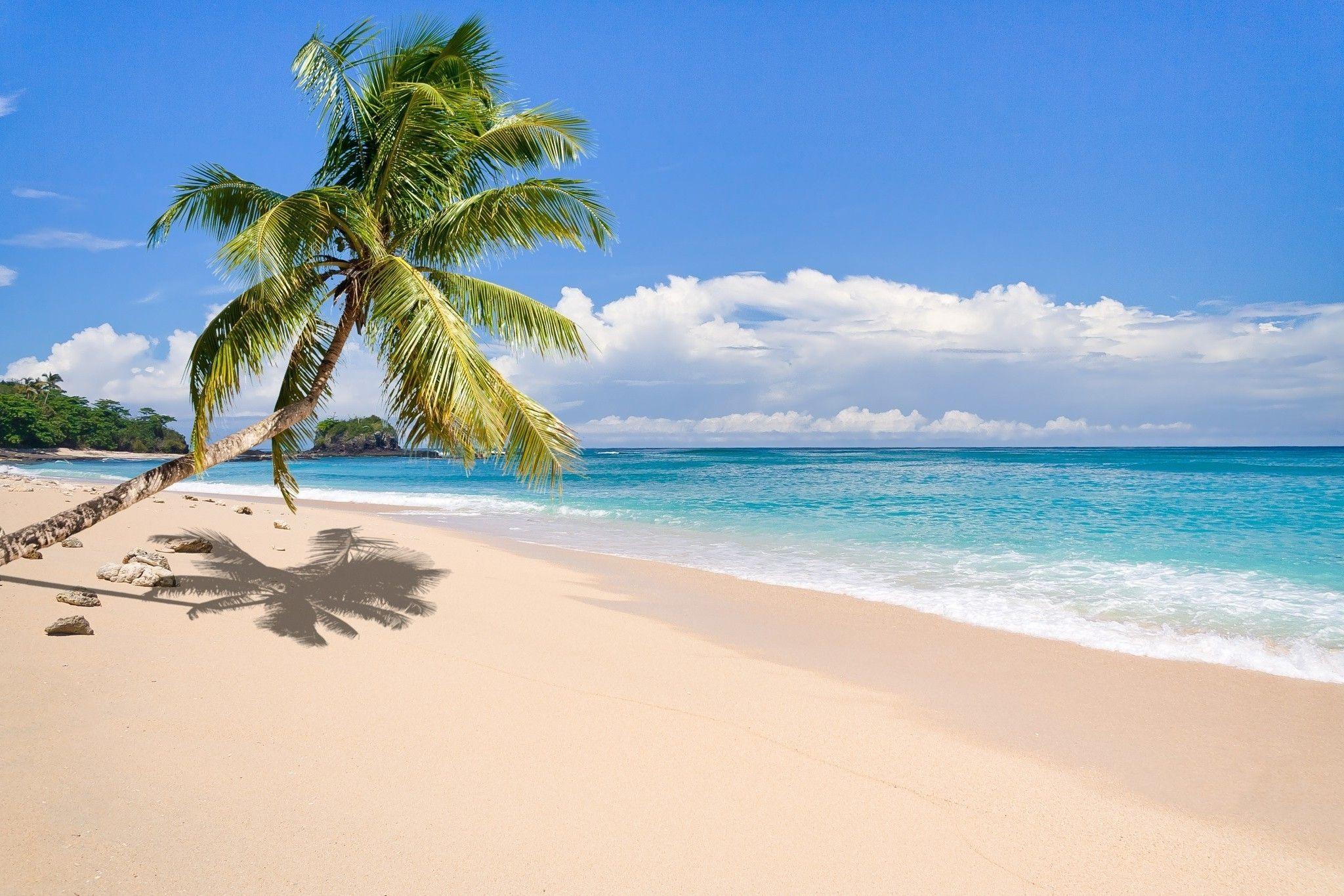 2048x1365 Thiên nhiên, Phong cảnh, Nhiệt đới, Đảo, Bãi biển, Cây cọ - Đảo sa mạc - 2048x1365 - Tải xuống Hình nền HD