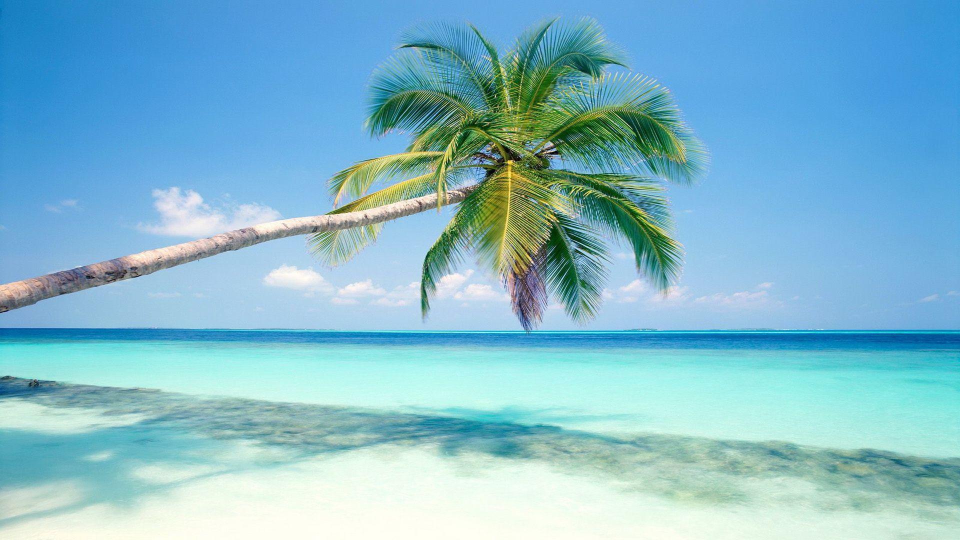 1920x1080 Tải xuống miễn phí Đảo nhiệt đới Bãi biển Hình nền máy tính để bàn Hình nền HD [1920x1080] cho Máy tính để bàn, Di động & Máy tính bảng của bạn.  Khám phá Hình nền Đảo Nhiệt đới.  Hình nền đảo, Hình nền bãi biển miễn phí cho máy tính để bàn, Miễn phí