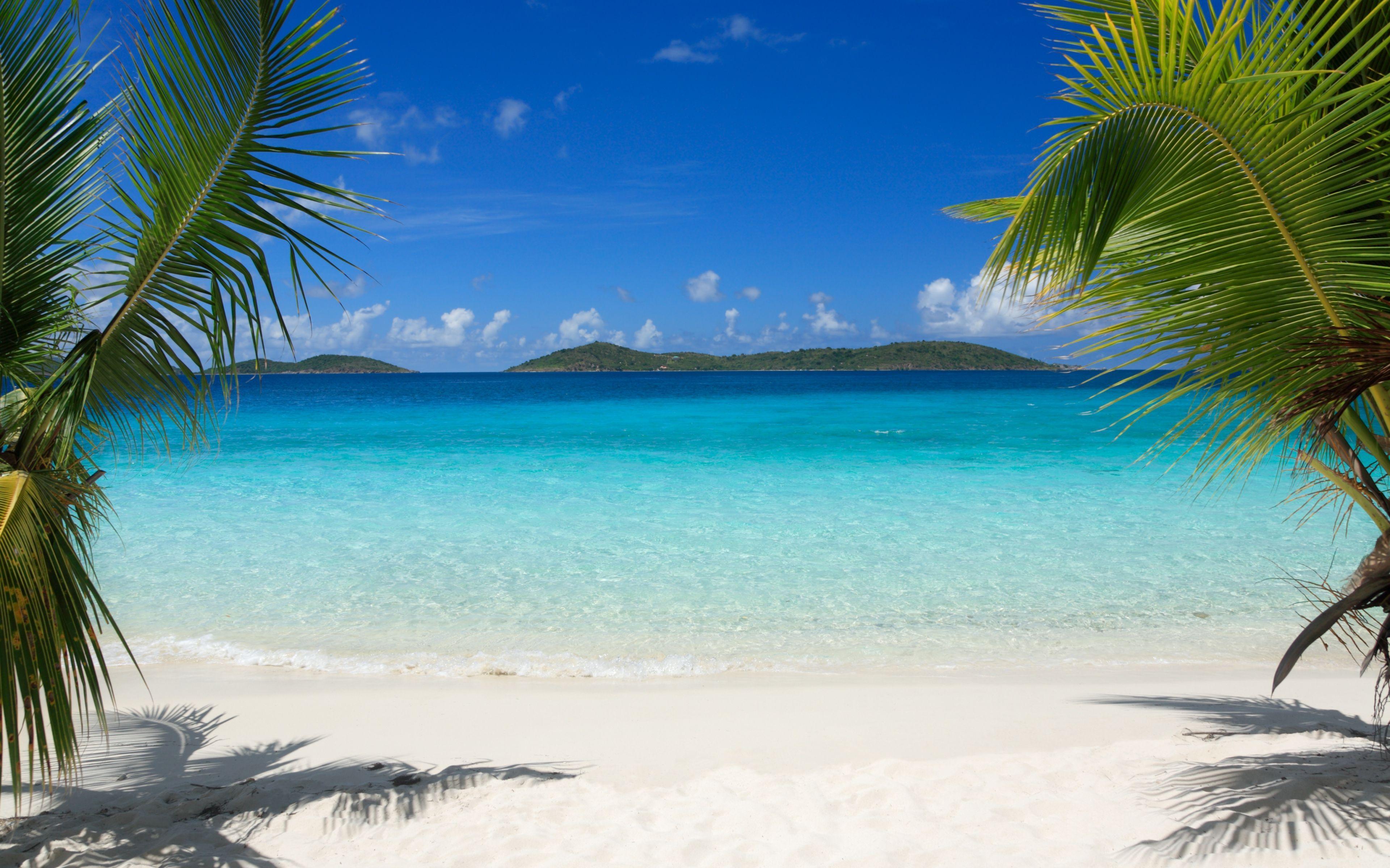3840x2400 Tải xuống miễn phí Tải xuống HD Tropical Island Beach Palm Trees Sea Waves Wallpaper [3840x2400] cho Máy tính để bàn, Di động & Máy tính bảng của bạn.  Khám phá Hình nền máy tính để bàn của Bãi biển Đảo Nhiệt đới.  Hình nền bãi biển nhiệt đới
