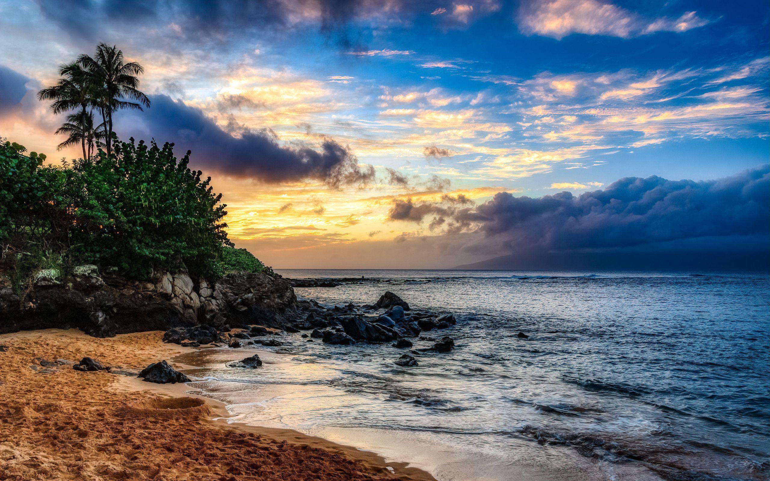 2560x1600 Tải xuống hình nền 2560x1600 đảo, bãi biển, cây cọ màn hình rộng 16:10 nền HD
