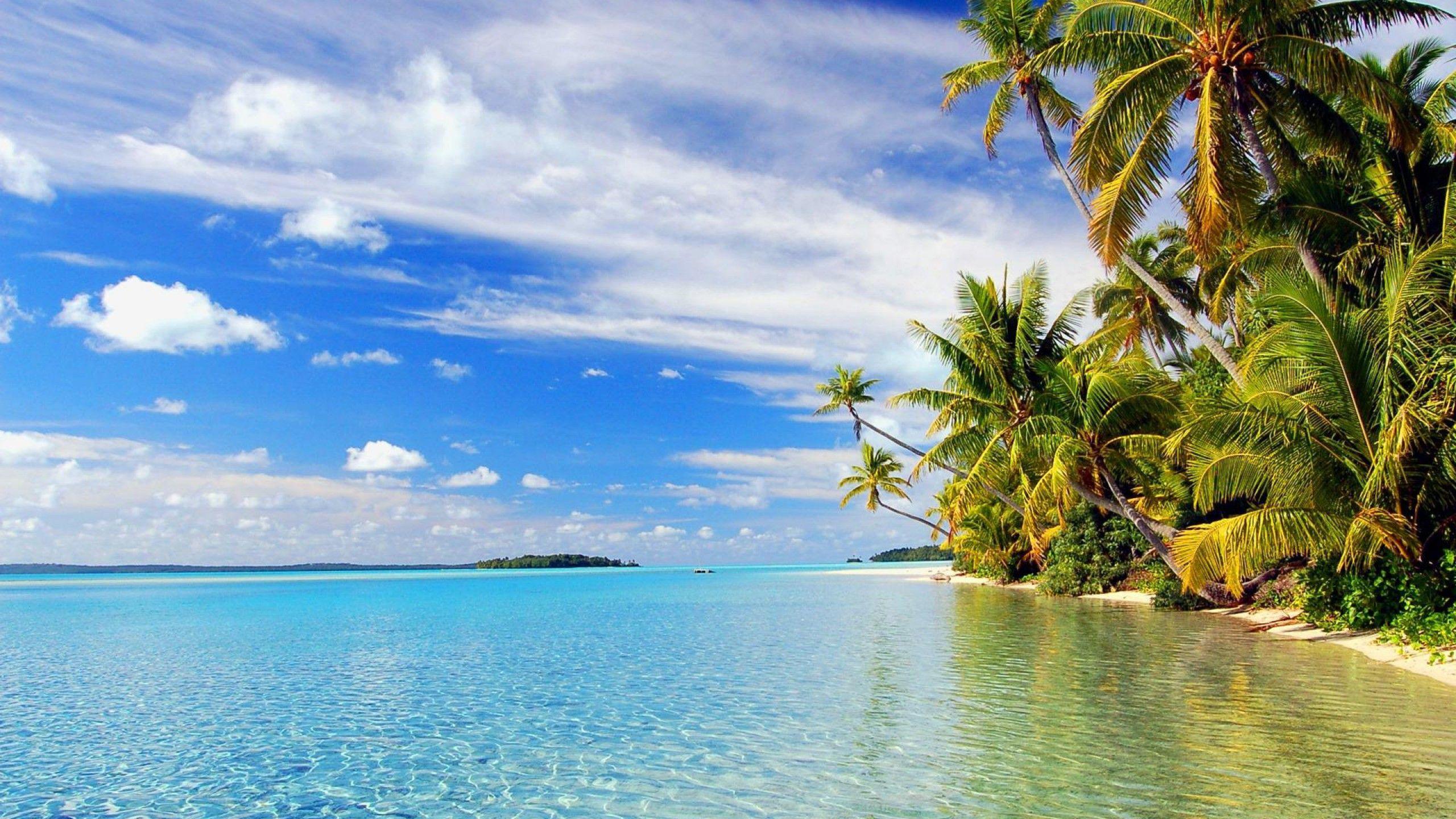 Hình nền máy tính để bàn 2560x1440 Tropical Beach