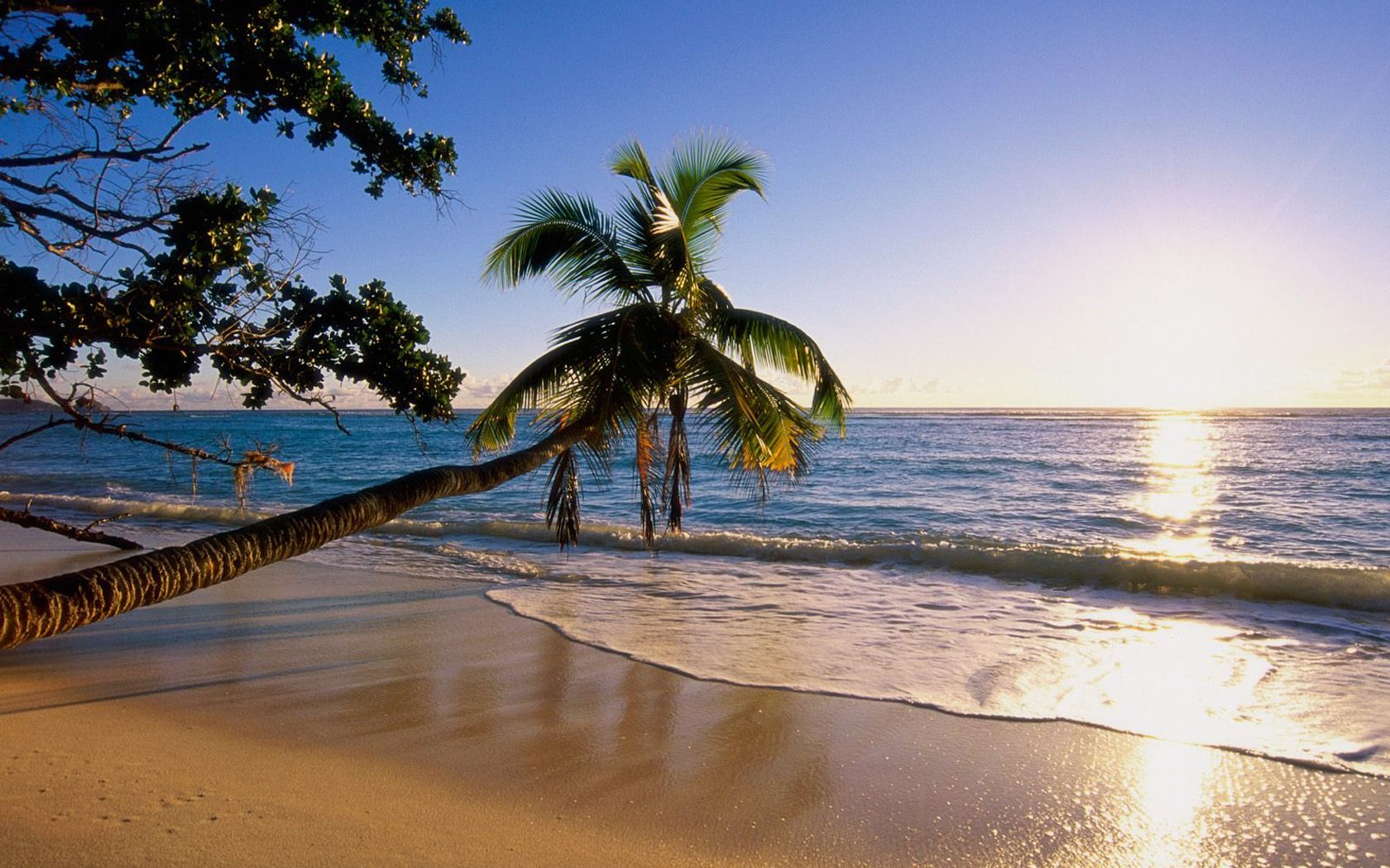 1680x1050 Bãi biển trên Đảo Silhouette, Tải xuống hình nền Seychelles 1680x1050 - Hình nền Máy tính để bàn, Hình nền có độ phân giải cao và iPhone, Tải xuống miễn phí
