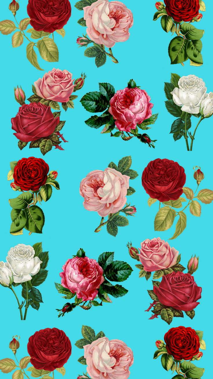 Wallpapers Flower Wallpaper For Iphone Colorful Pattern With