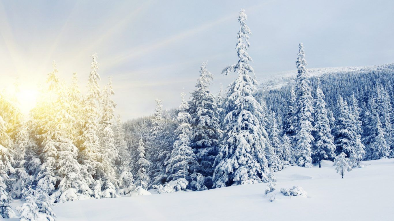 Russia Snow Wallpapers - Top Free Russia Snow Backgrounds ...
