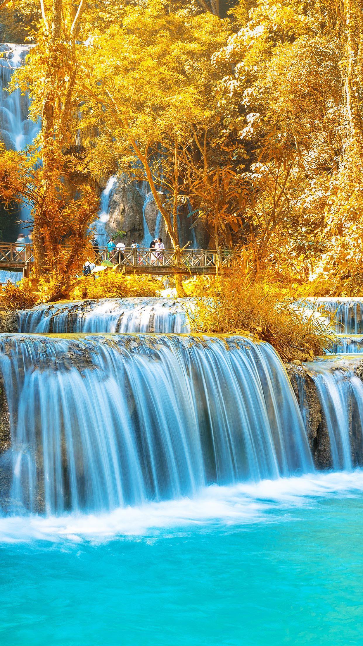 1242x2208 Fall Hình nền iPhone XS - Nền mùa thu đẹp nhất