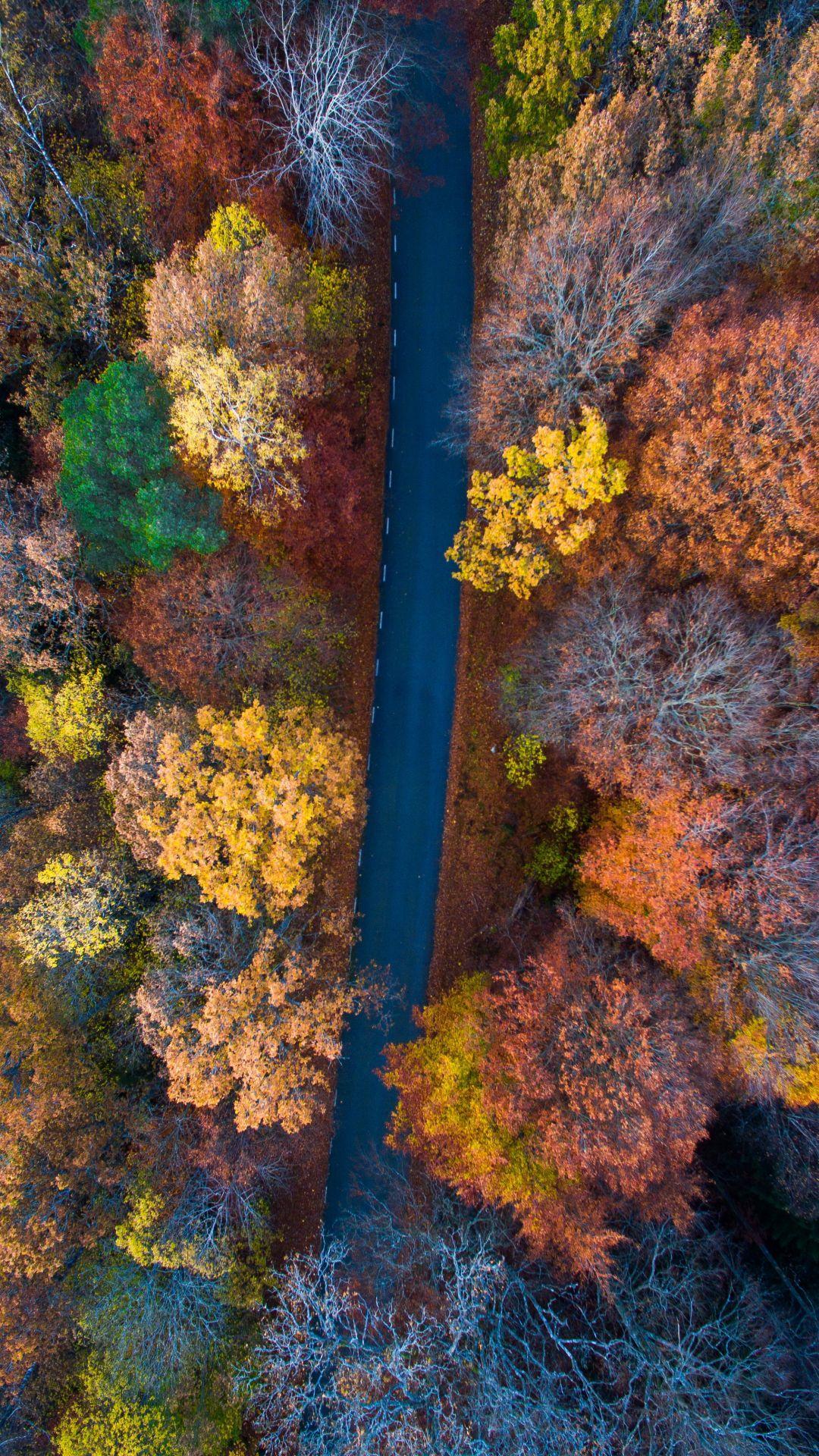 1080x1920 Màu sắc mùa thu Hình nền iPhone
