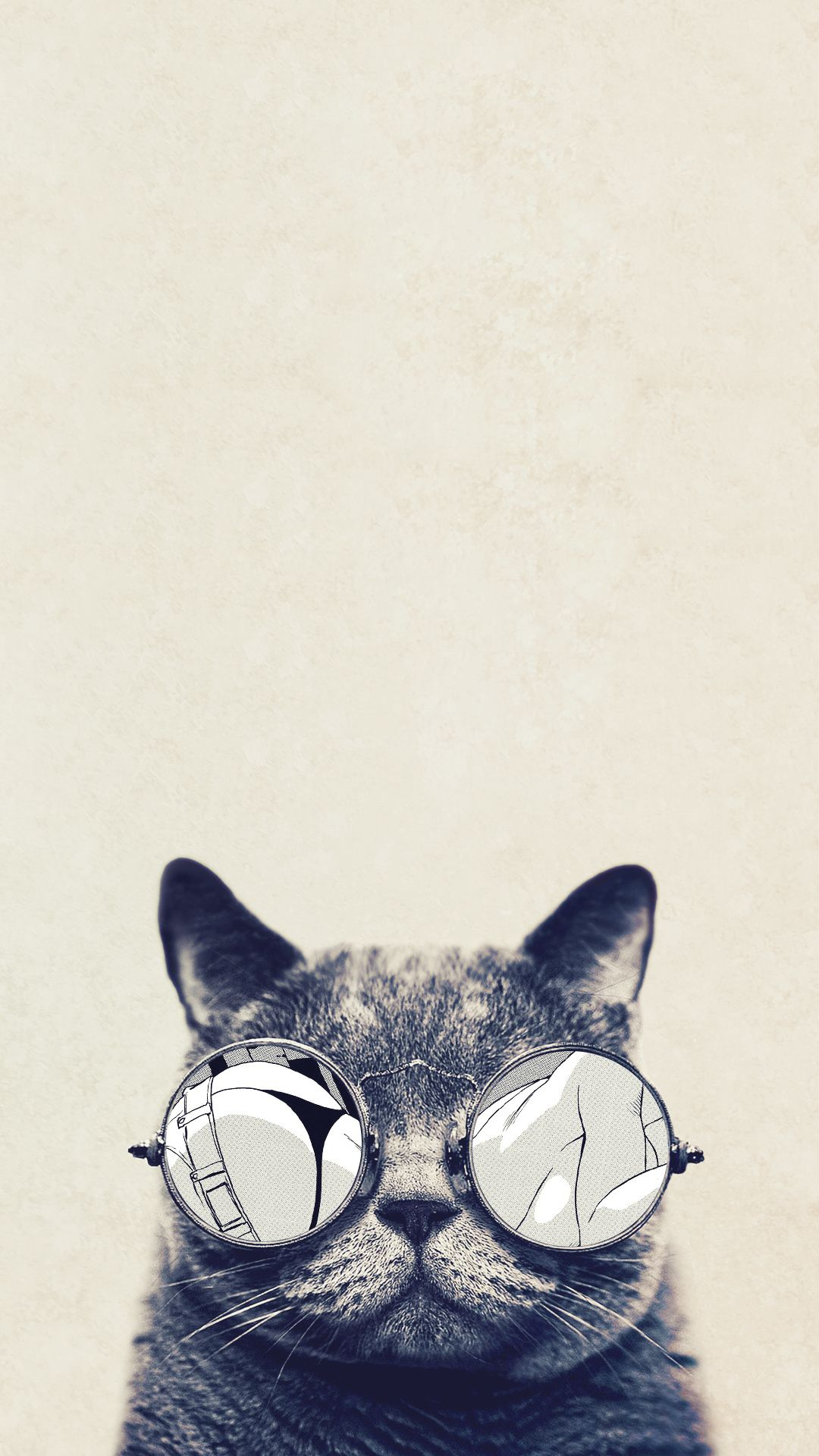 Cool Cat Iphone Wallpapers Top Free Cool Cat Iphone