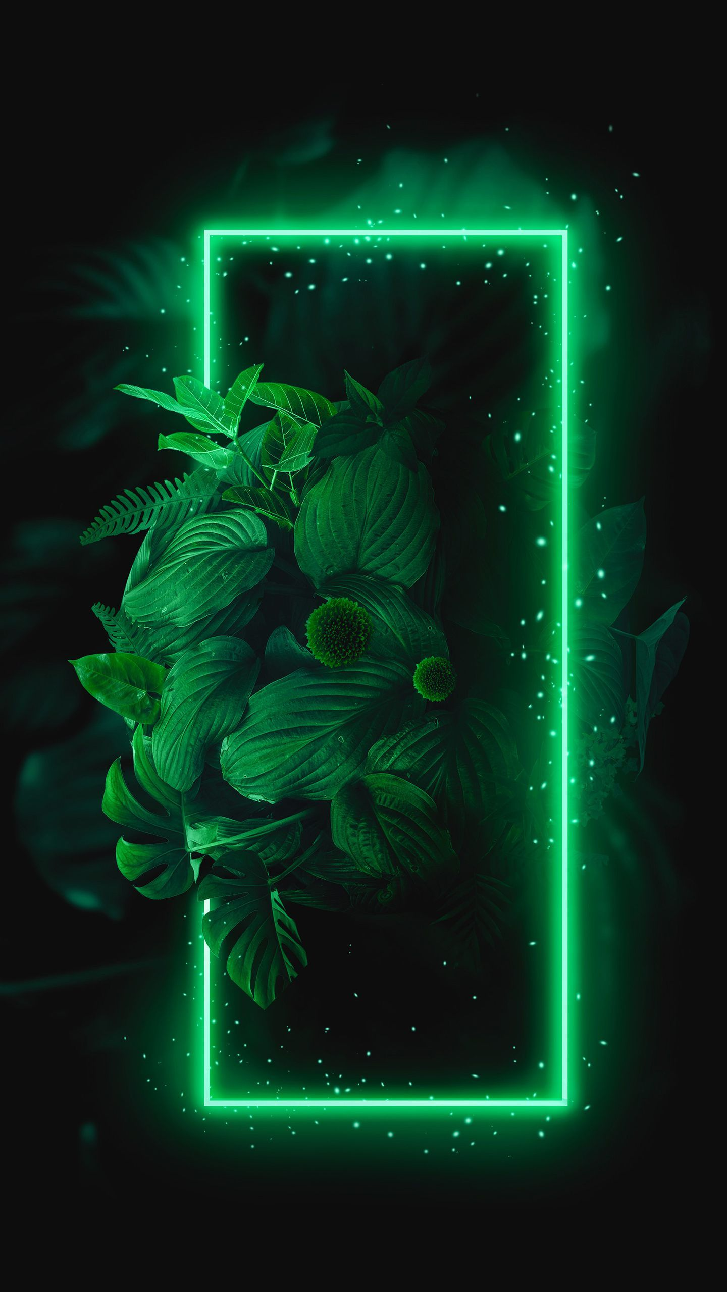 Green Neon Wallpapers Top Free Green Neon Backgrounds Wallpaperaccess