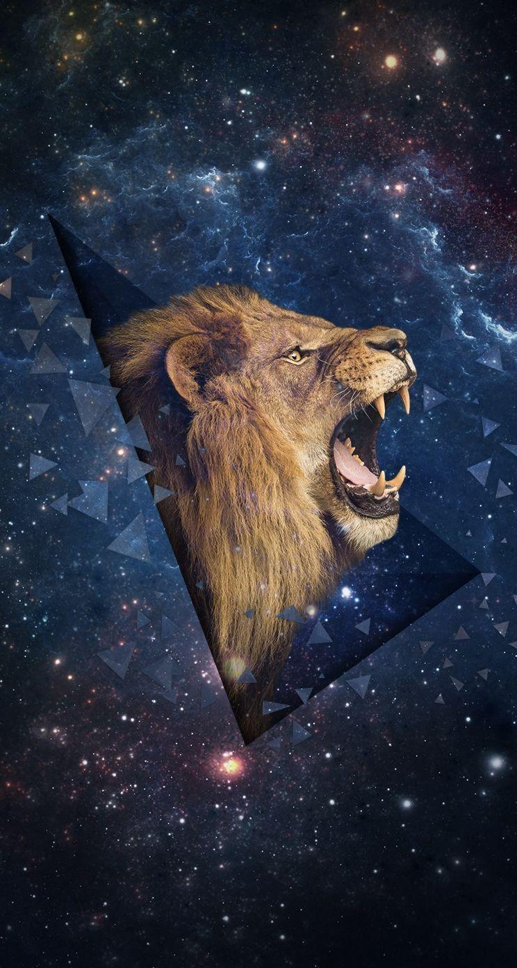 Universe Trippy Lion Wallpapers Top Free Universe Trippy Lion