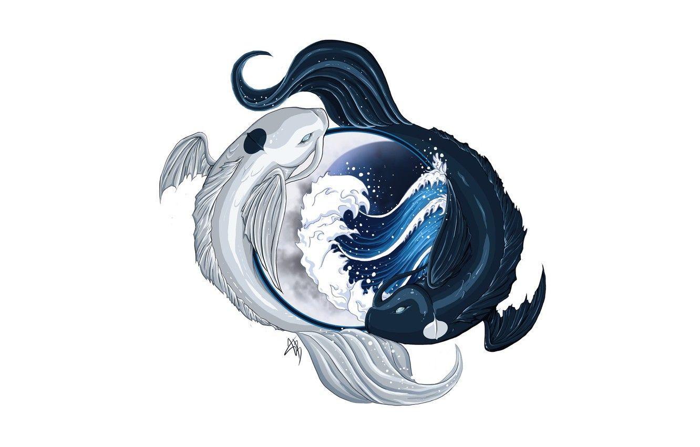 Koi Yin Yang Wallpapers Top Free Koi Yin Yang Backgrounds Wallpaperaccess
