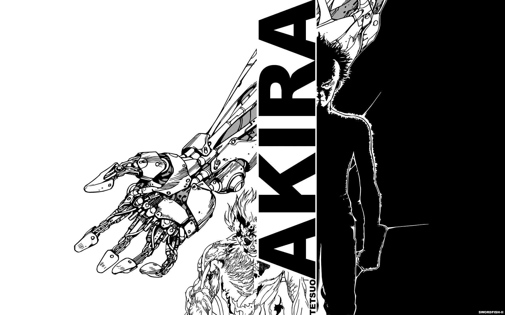 Akira Manga Wallpapers Top Free Akira Manga Backgrounds Wallpaperaccess