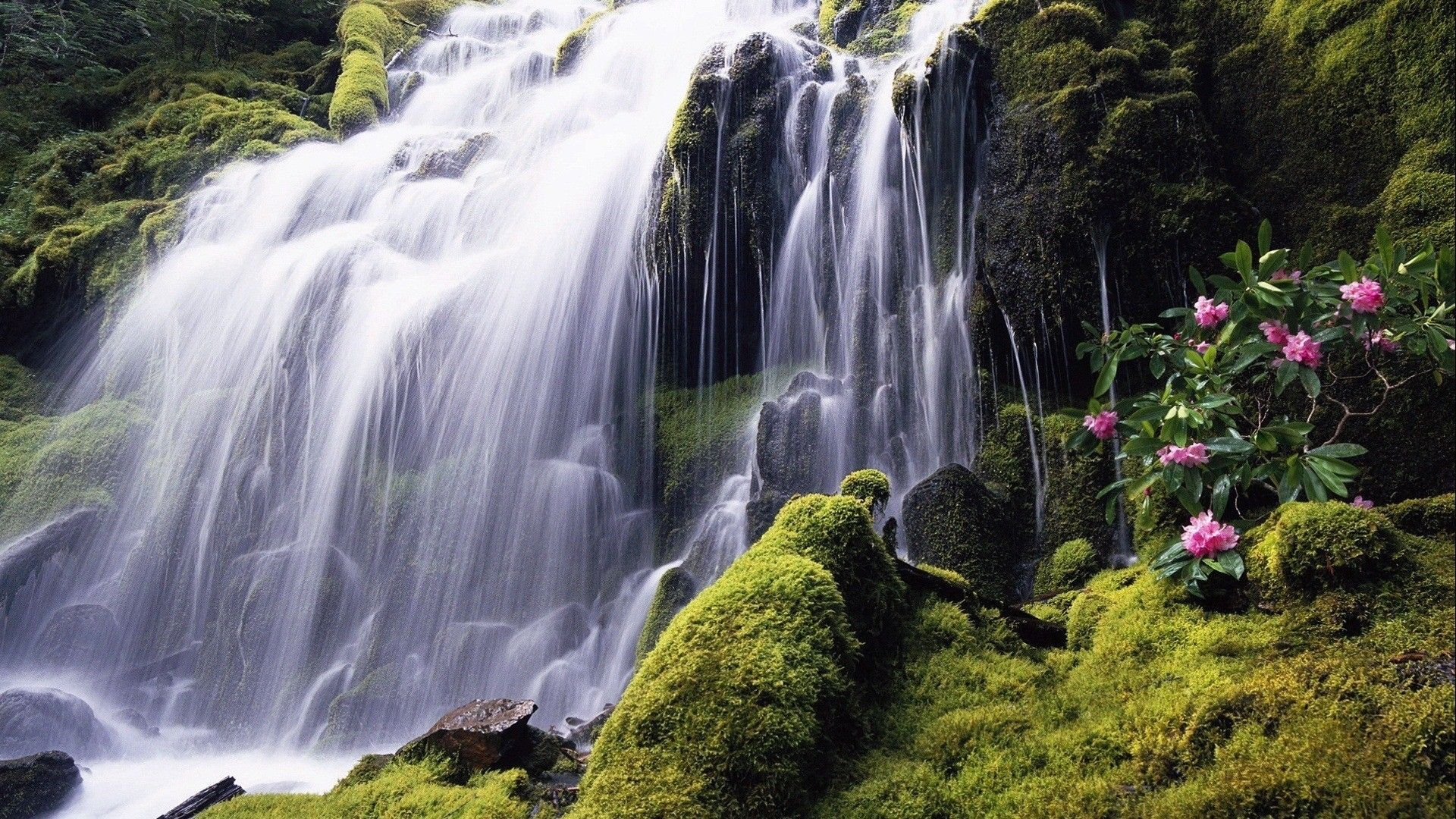 Philippines Waterfall Wallpapers Top Free Philippines