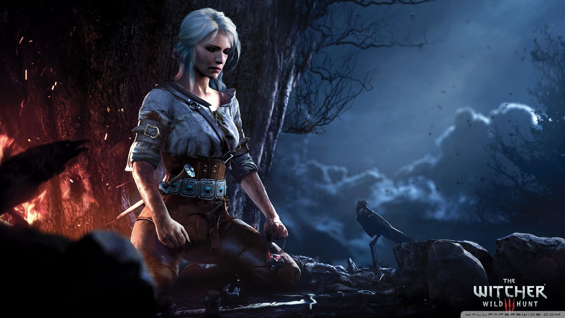 Witcher 3 Wallpapers Top Free Witcher 3 Backgrounds