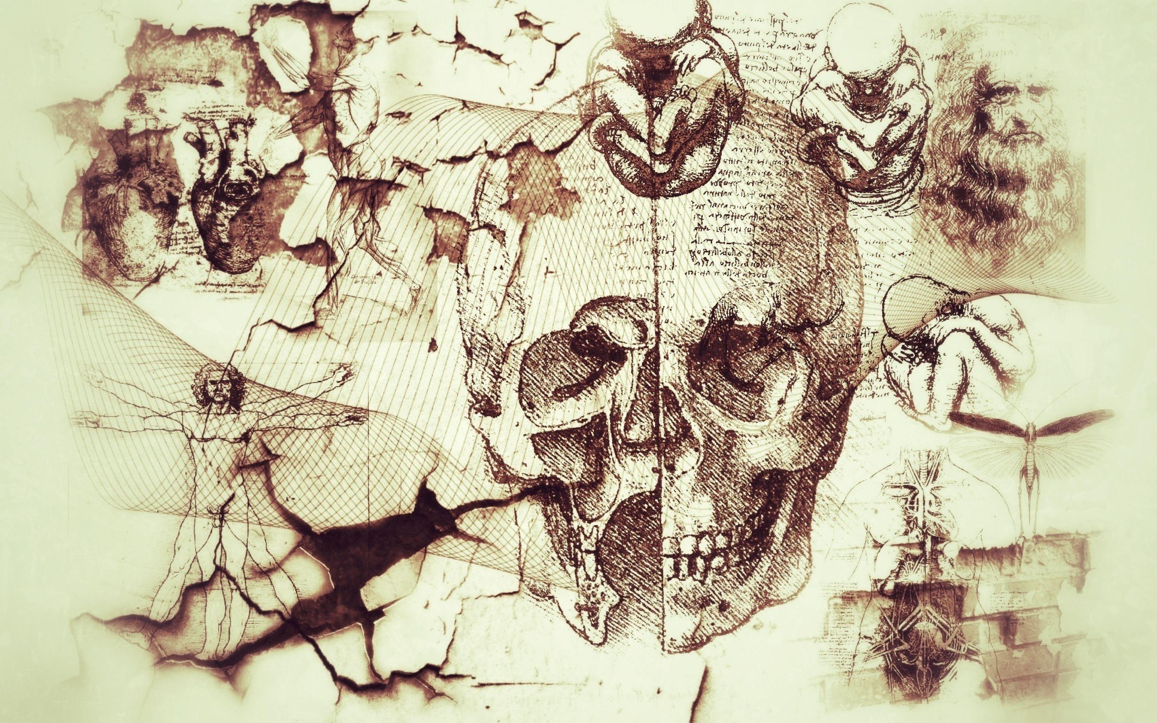 Leonardo Da Vinci Wallpapers - Top Free Leonardo Da Vinci ...