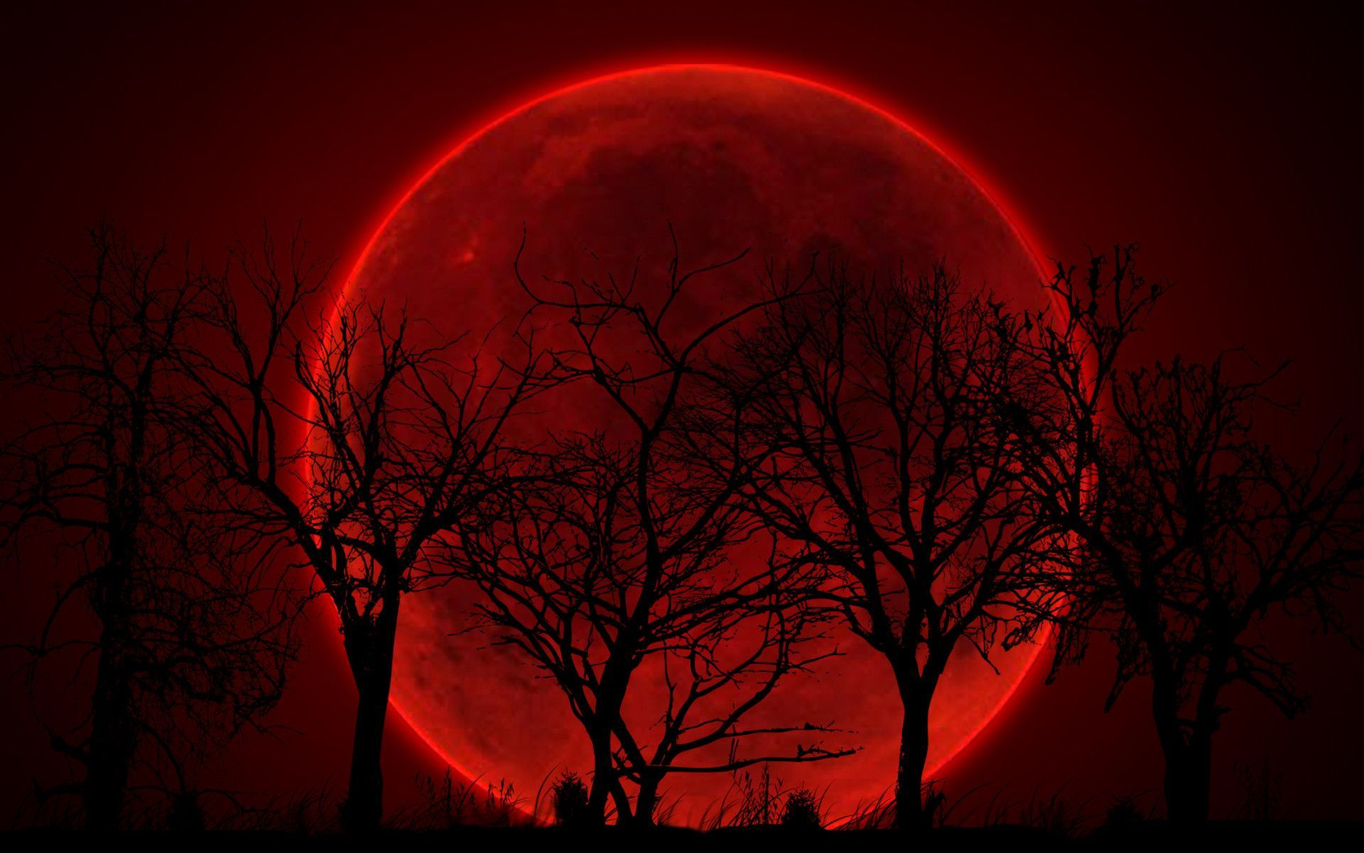 Blood Red Wallpapers - Top Free Blood ...