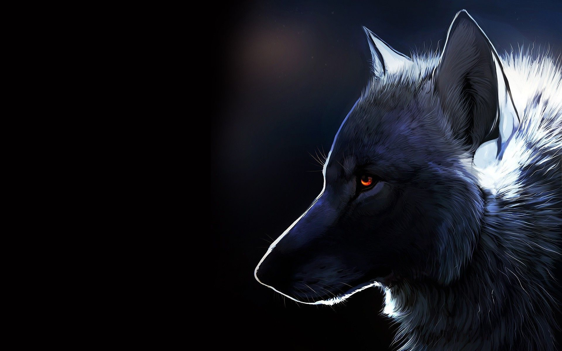 Hình ảnh HD 1920x1200 Wolf Wallpaper.  Một hình nền HD.  chó sói