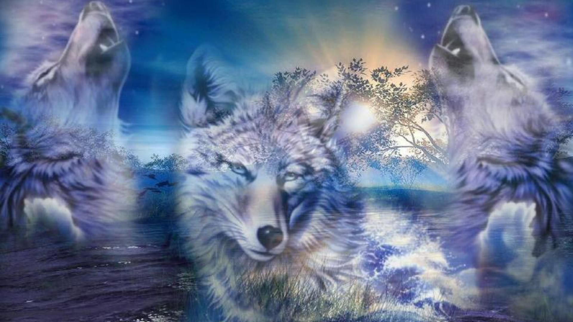 1920x1080 Wolf Fantasy hình nền