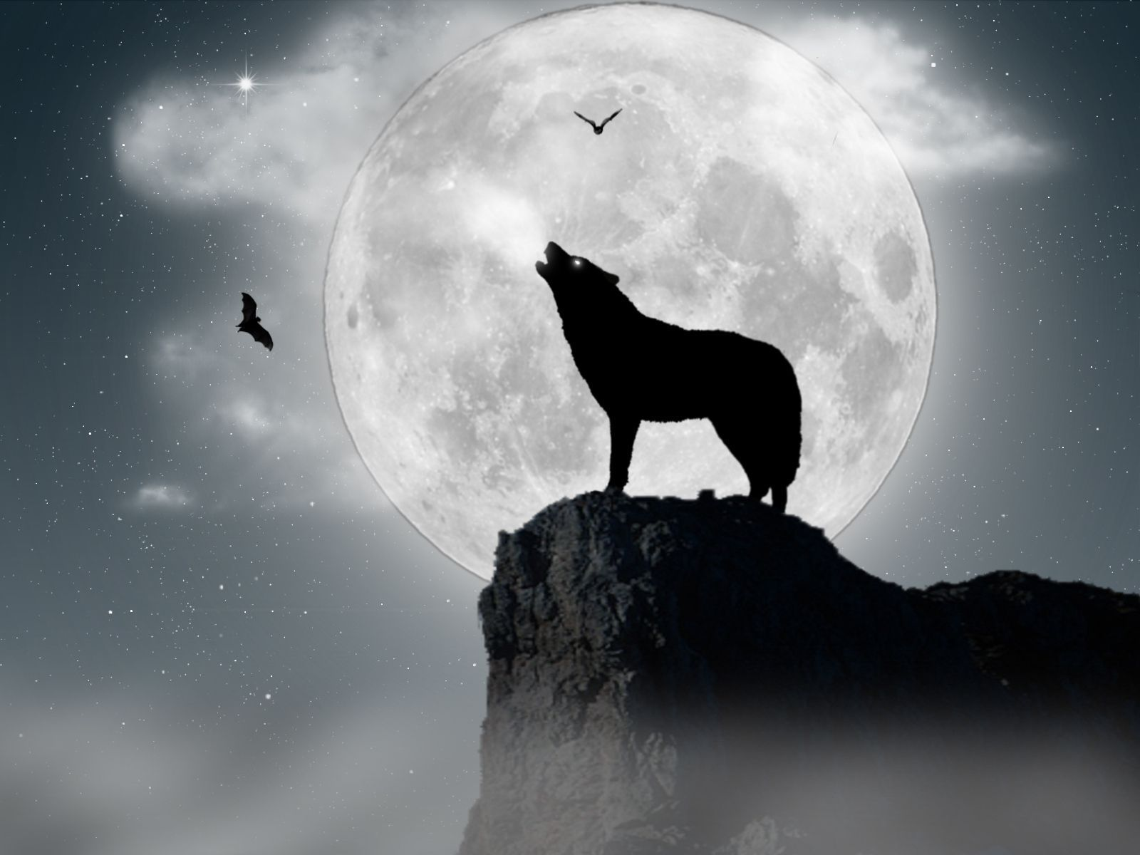 1600x1200 Wolf Wallpaper HD Gallery (78 Plus) PIC WPW5011742