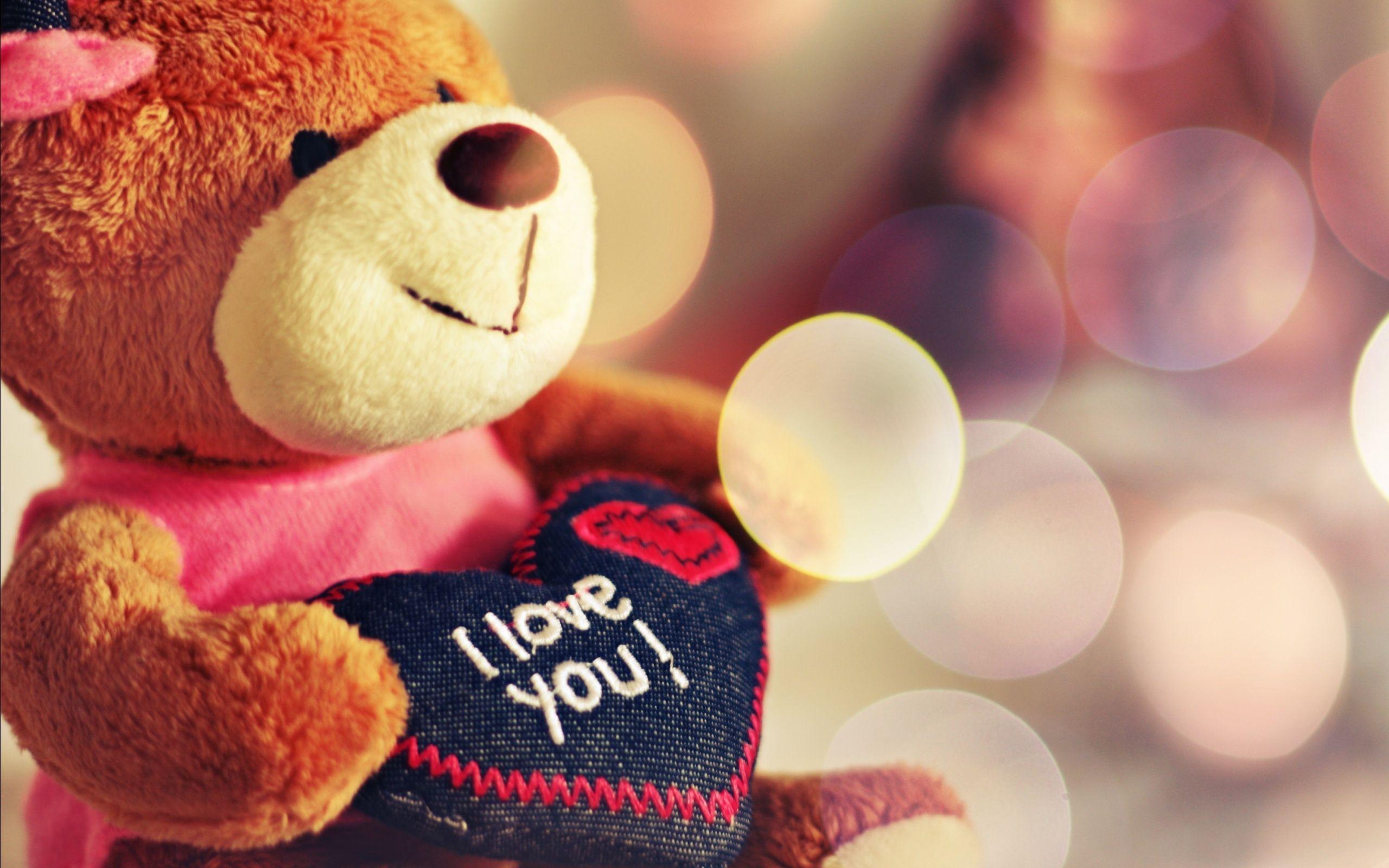 2560x1600 Big Cute Teddy Bear Gift Love Valentine Day Wa Wallpaper