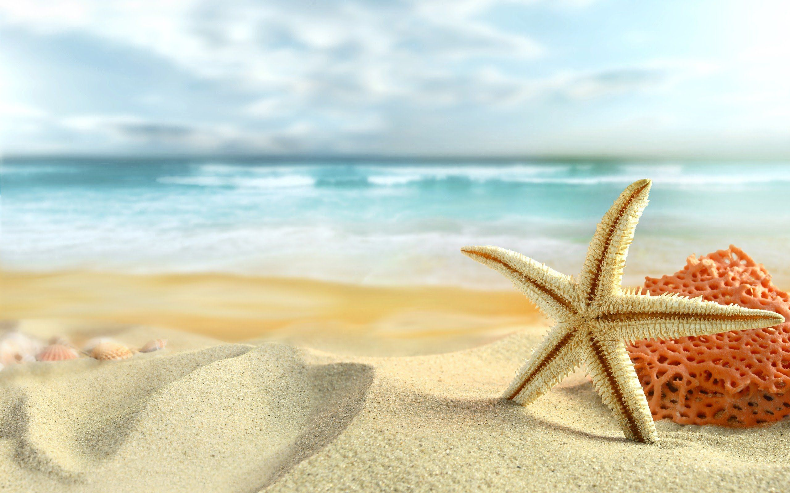 Summer Vacation Wallpapers Top Free Summer Vacation Backgrounds Wallpaperaccess