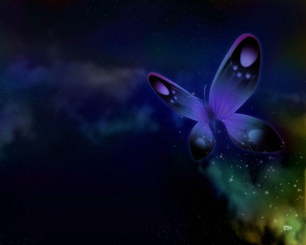 For My Desktop Butterfly Wallpapers Top Free For My Desktop Butterfly Backgrounds Wallpaperaccess