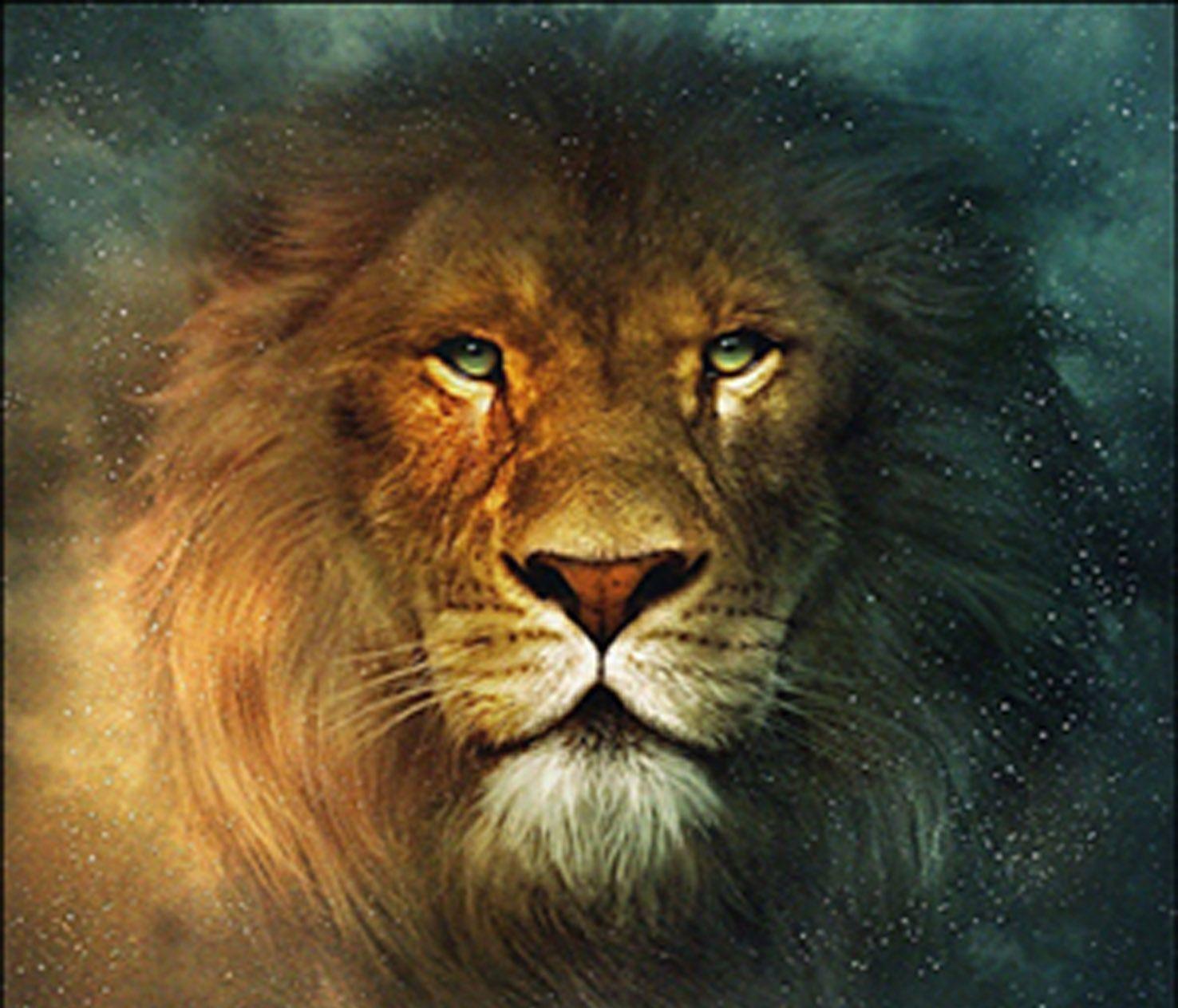 Cool lion wallpaper SF