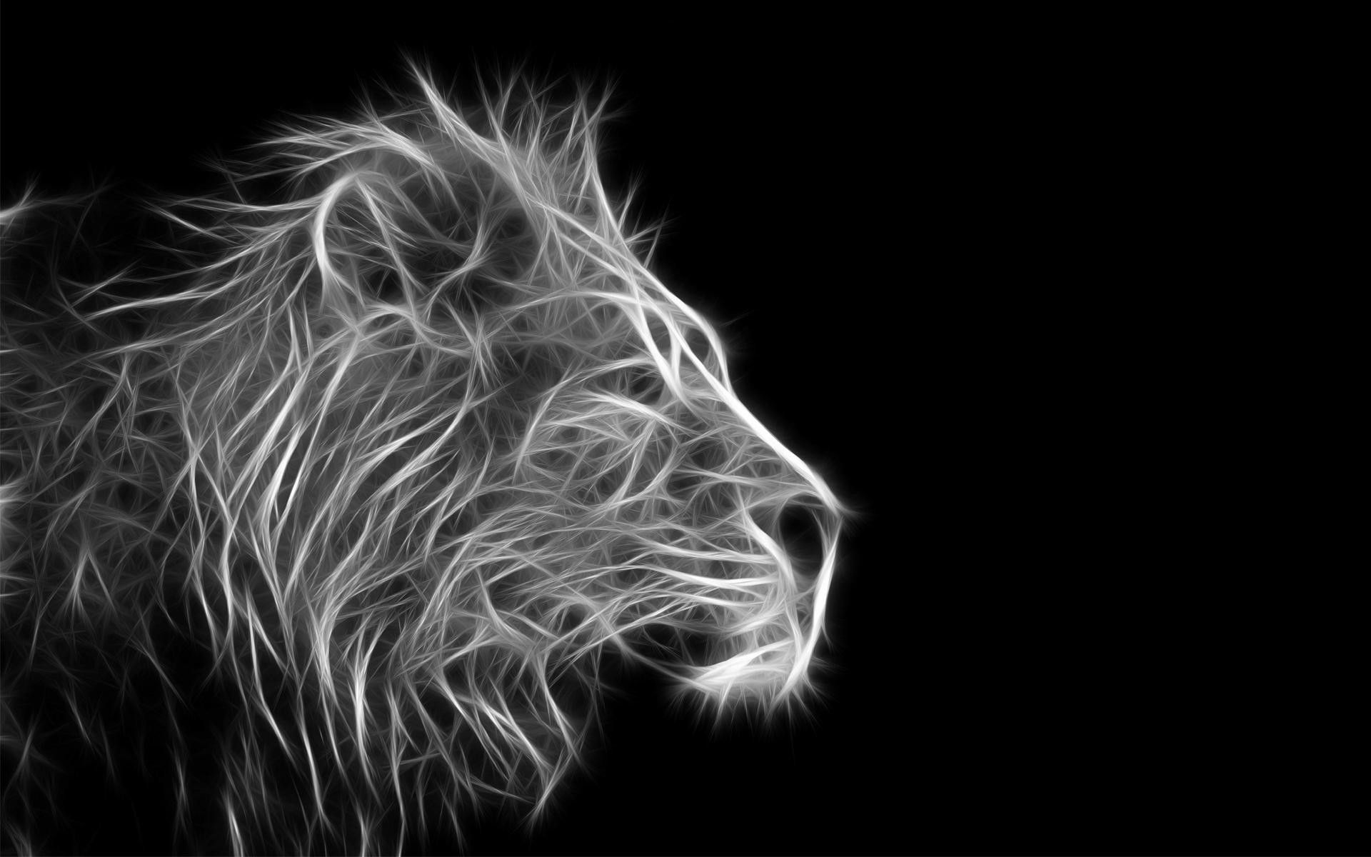 63 Best Free Cool Lion Wallpapers