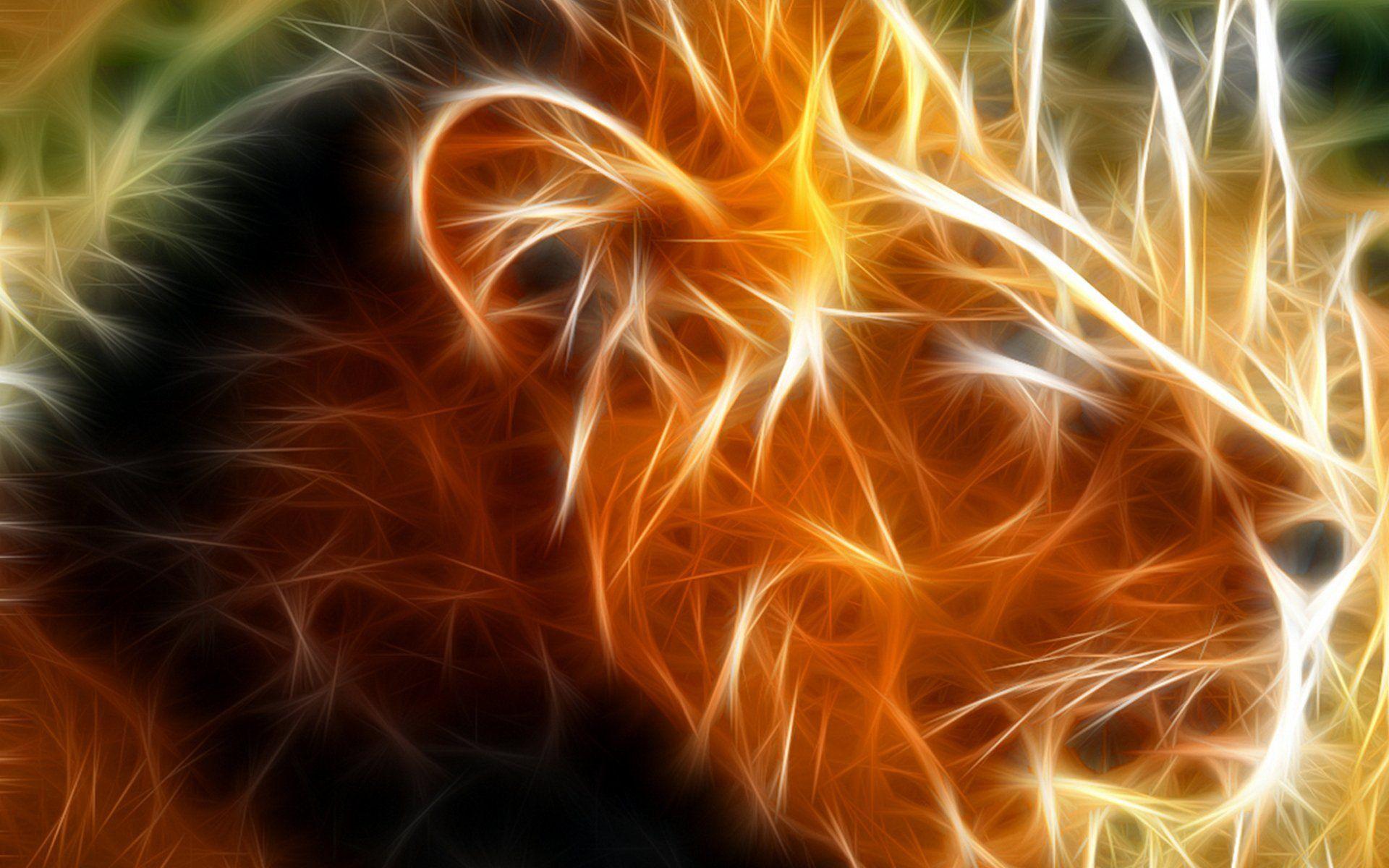 1920x1200 прохладный Лев обои-поделился Мередит #29146 / Mulierchile