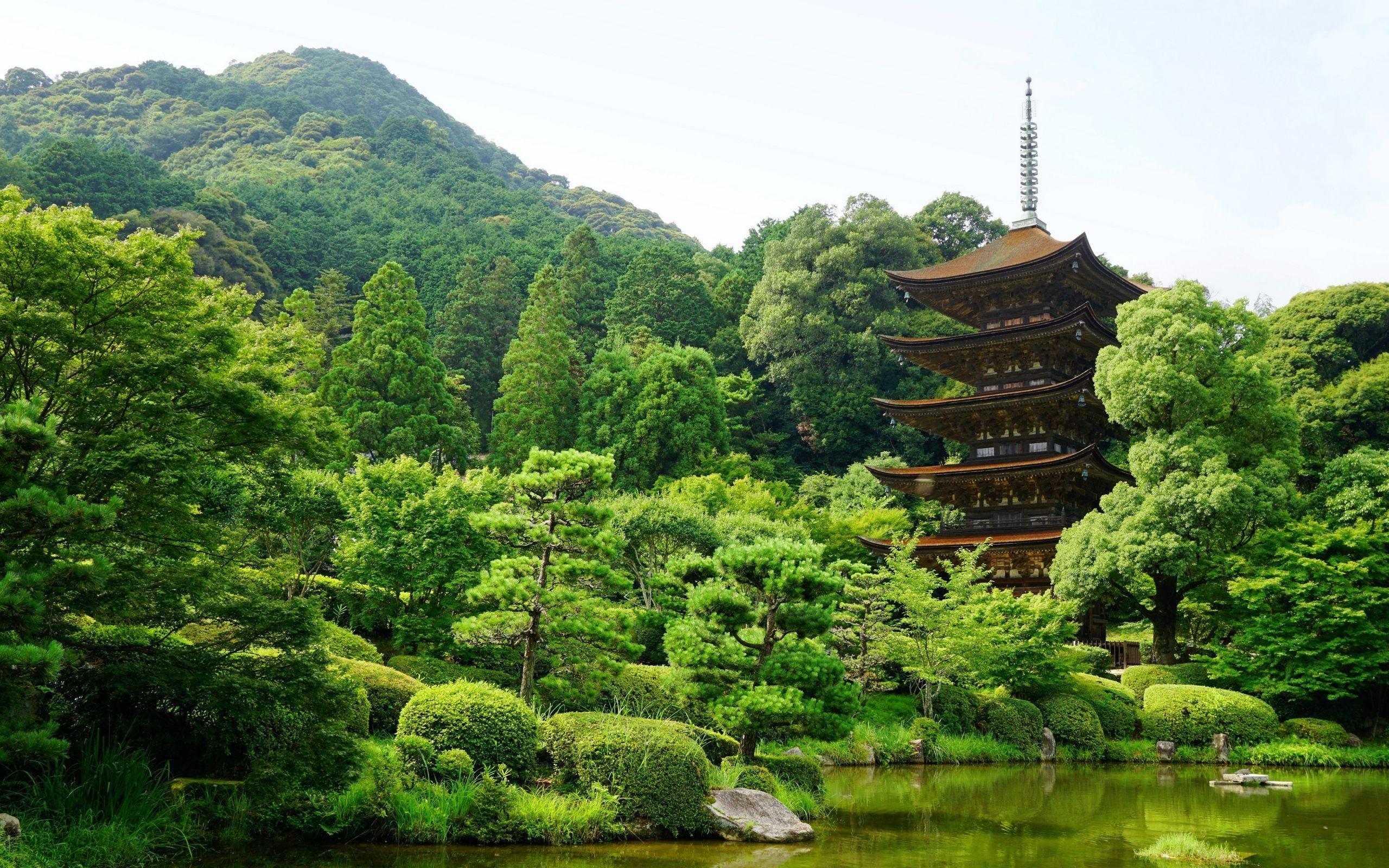 """2560x1600 Tanuki Japan Landscape Wallpaper""""> · Download · 1920x1200 ..."""