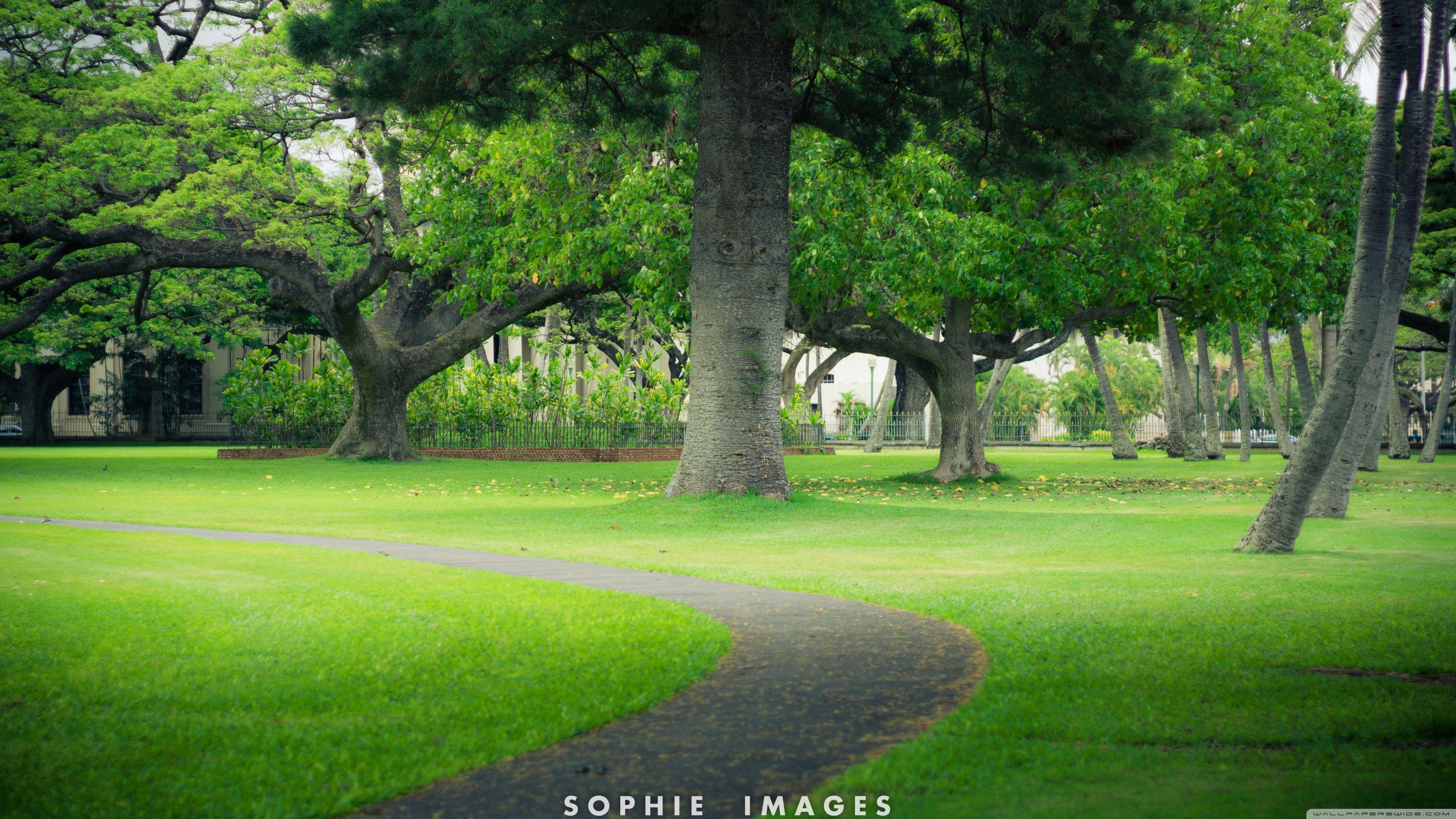 Hawaii 4k Wallpapers Top Free Hawaii 4k Backgrounds Wallpaperaccess